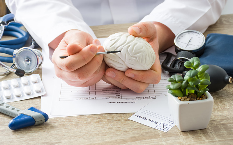 Imagem das mãos de um médicos segurando um molde de um cérebro de gesso explicando os tratamentos para esclerose múltipla