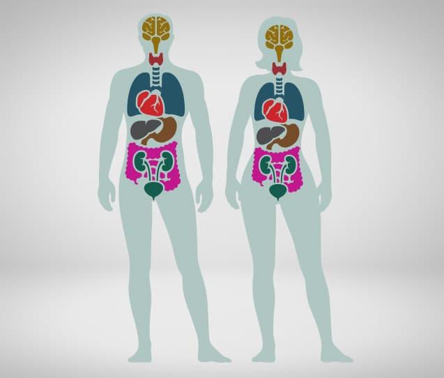 cancer neuroendocrino de pulmon hpv leep cure